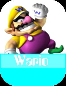 Wario MR