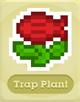 SQ TrapPlant