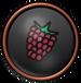 FP Raspberry Badge 1