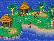 ACSS Island