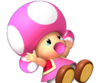 Baby Toadette