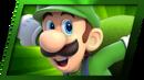 LuigiMatchPoint