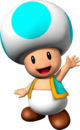 Cyan Toad NSMBVR