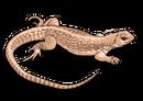 Reptilehouse nintenzoo