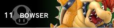 Bowser banner