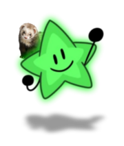 Green Starry and Wesley