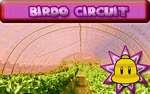 Birdo Circuit MKSR