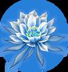Dragonflower F