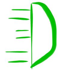 Dashingspirit