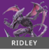 Ridley SSBAether