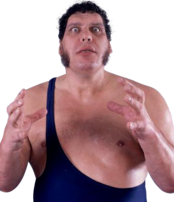 Andre the Giant-0