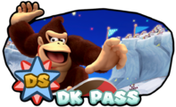 InfinityRemixCourse DS DK Pass