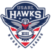 USA eagles rugby league logo