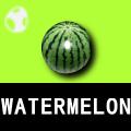 Watermeloinitem