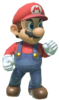 1.Mario in a fighting stance
