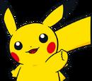 Pokémon Racing U