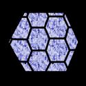 PolygonalShield