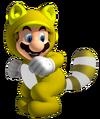 Invincibility Tanooki Mario