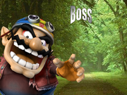 Boss stage 4