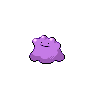 PNW_Ditto.png