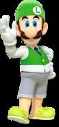 Luigi-New3DS