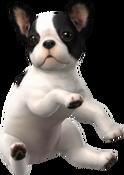 Nintendogs-bulldog