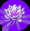 Dragonflower P