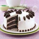 Mint-Patty-Cake exps140673 CMT2426390C08 17 2b RMS