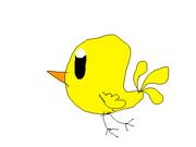 Bird (Luke)