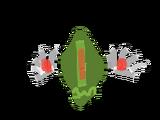 Neon (type)