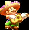 Poncho Sombrero Mario 3