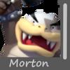 Morton Image