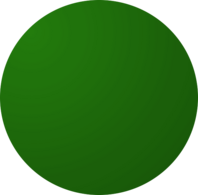 Dark Green Dodgeball