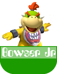 Bowser Jr MR