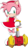 Amy rose by angie wolf-d8vcm4c