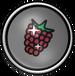 FP Raspberry Badge 2