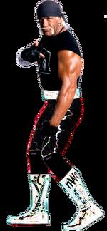 Hollywood Hogan '96