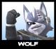 SSBCalamity - WolfIcon