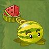 Melon Slice PitcherAS