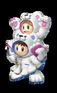 Polar Bear Climbers PM