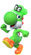 Yoshi with a Bonneter