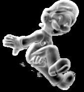 Metal Luigi SM3DW