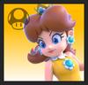 SSBF Daisy