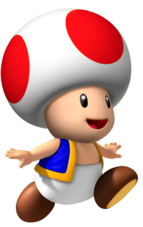 Toad NSMP