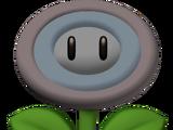 Vanish Flower