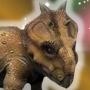 PachyrhinosaurusJWTPMO