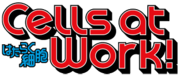 Cells-At-Work-English-Anime-Visual-001-20180118