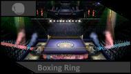 BoxingRingVersusIcon