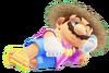 2.Resort Mario 6
