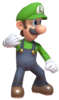 1.Luigi Standing